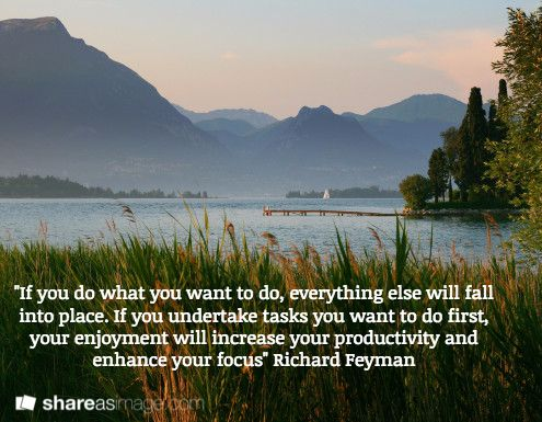 """""""If you do what you want to do, everything else will fall into place. If you undertake tasks you want to do first, your enjoyment will increase your productivity and enhance your focus"""" Richard Feyman"""
