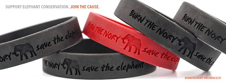 Burn The Ivory   Save The Elephant Bracelet: 35,000 elephants are being killed each year for their tusks. Show your support for ending the ivory trade and saving the elephant from extinction. Bracelets are a $10 donation each. Proceeds go to Big Life's anti-poaching efforts in Kenya and Tanzania. Join the cause here: http://burntheivory.org/shop/