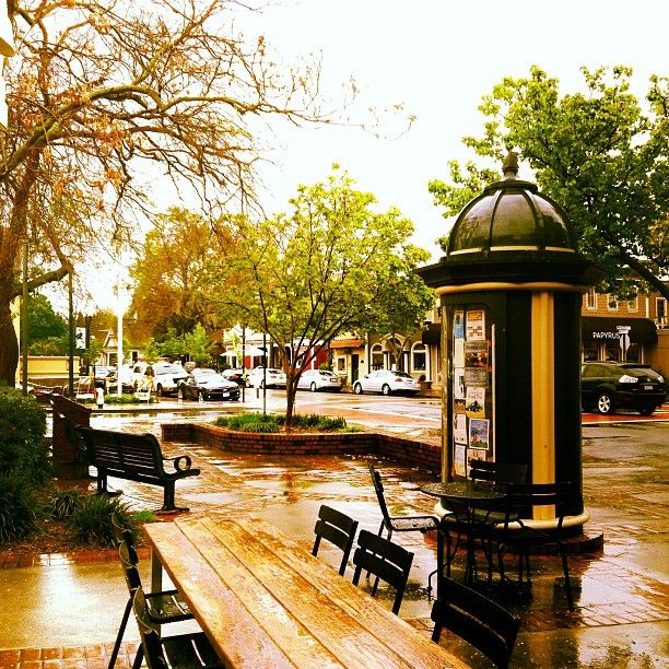 Rainy Fall Day in Downtown Danville Ca