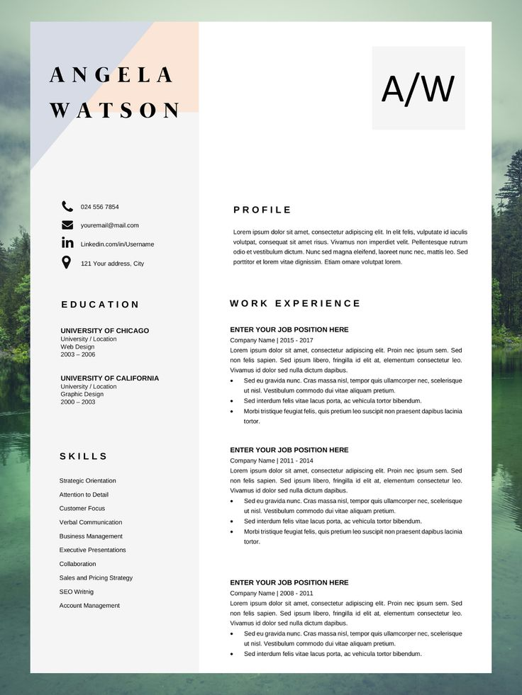 Resume Template Download Basic Resume Template Angela