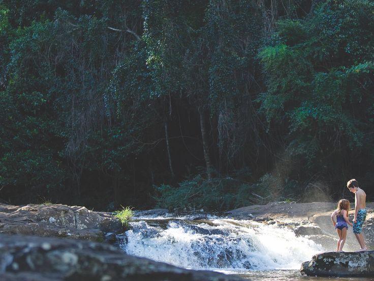 Gardners Falls is a hidden gem in the Sunshine Coast hinterland.