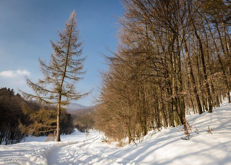 Small Carpathian Mountains