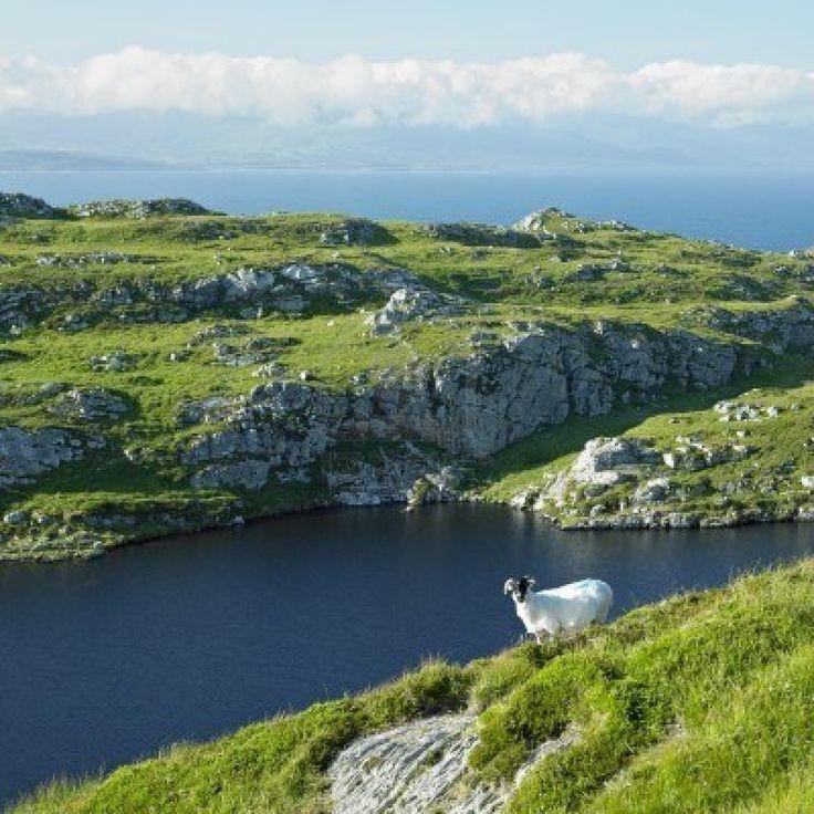 Head Peninsula, County Cork - Ireland