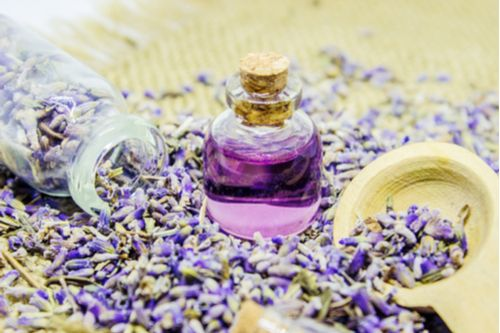 This article describes in detail about Lavender Hair Oil - the various benefits, home remedies, Precautions, FAQs & more.