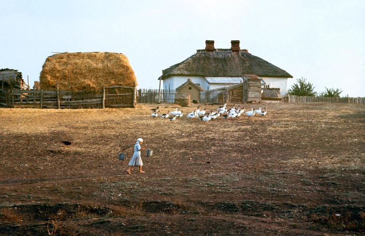 <b>Caption from LIFE.</b> The Budenny State Farm, where Rostov…