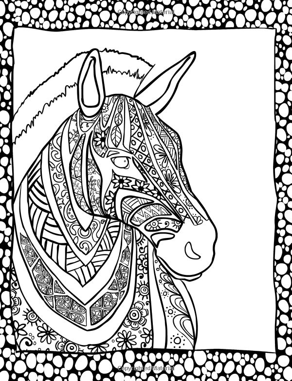 Amazon Animal Creations Coloring