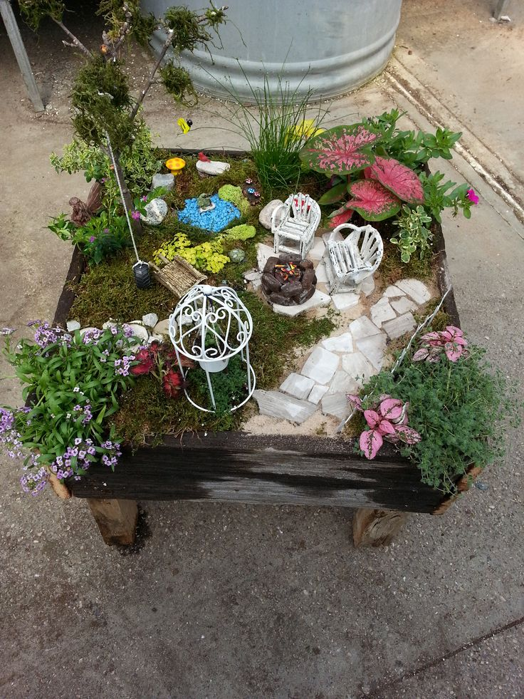Sungard Exhibition Stand Here Alone : Best fairy and succulent container gardens images on