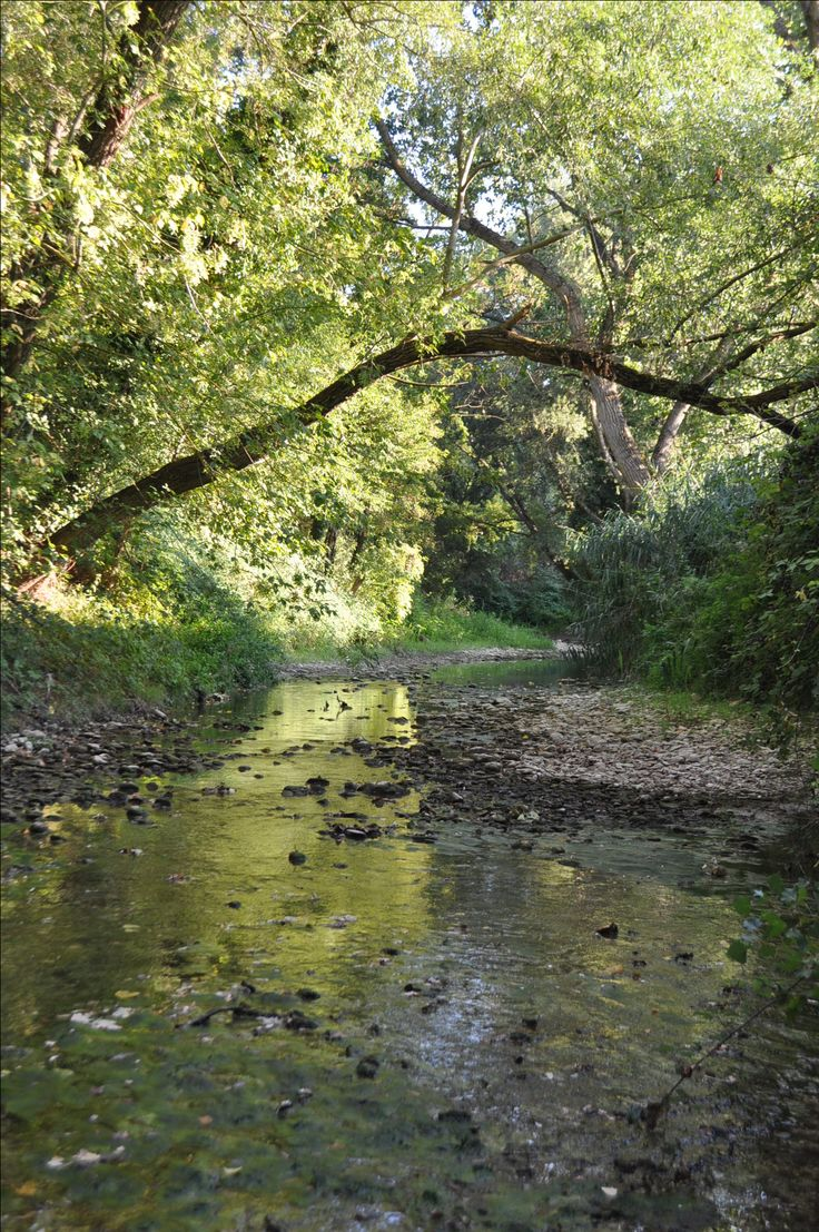 Der Fluss fließt am Ferienhaus Casa Valrea vorbei. Falls ihr Lust habt auf italienischen Landurlaub in schönen Ferienwohnungen, www.casavalrea.de