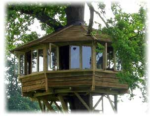 20 best images about tree house ideas on pinterest trees - Tree house plans for adults ...