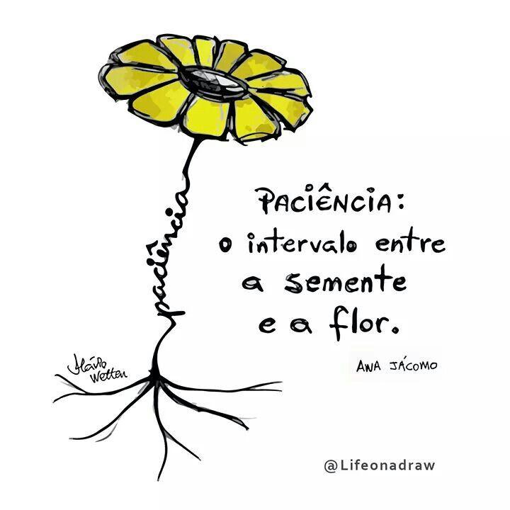 Paciência: o intervalo entra a semente e a flor.
