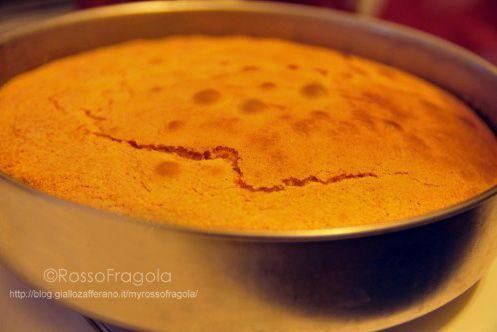 Pan di Spagna ricette varie - Rosso Fragola http://blog.giallozafferano.it/myrossofragola/pan-di-spagna-ricette-varie/