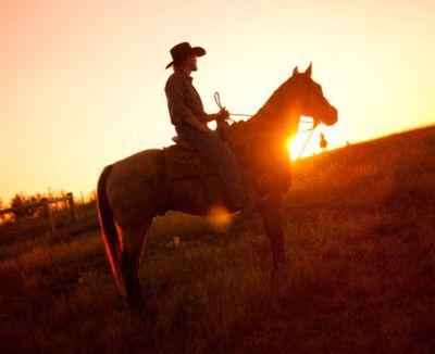 North Dakota, Black Leg Ranch. Karl Johan Larsson Photography