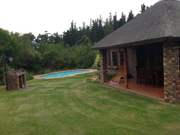 Please contact Coral Tree Cottages near Plett directly for rates and availability on Tel : +27 44 532 7822    Email : info@coraltreecottages.co.za    Web site : www.coraltreecottages.co.za