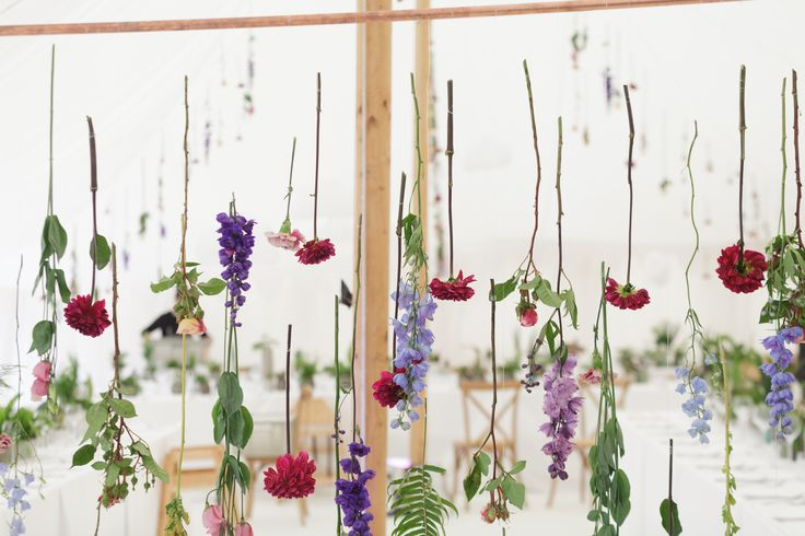 Suspended flowers in the Oyster Pearl