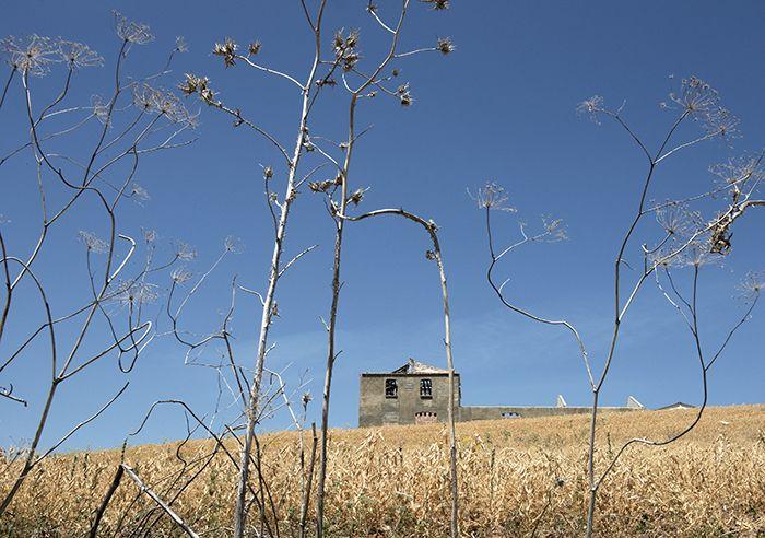 Ik dop boontjes in een vallei buiten Ronda. Ik weet het! Niet je standaard opening voor een reisverhaal. Naast me, aan tafel, reciteert een 92-jarige vrouw een gedicht van Bécquer.   Romantisch Ronda - Nomad & Villager