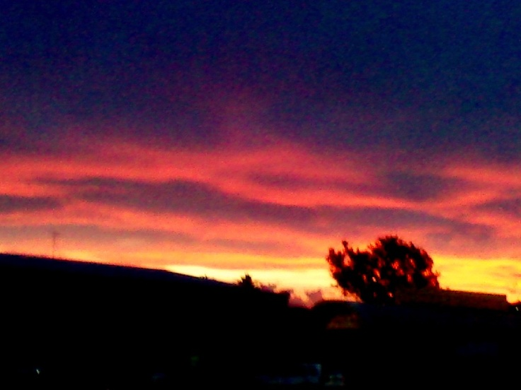 sunset napier; 2012  taken on my huawei phone