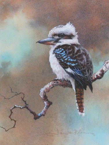 Watercolor Kookaburra painting by Janet Flinn