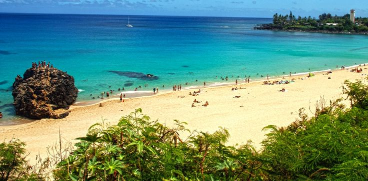 Oahu Snorkeling - Hawaii Jeep Tours Hawaii Jeep Tours