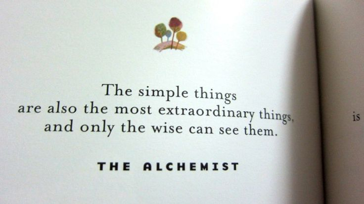 the-alchemist-quote.jpg (800×449)