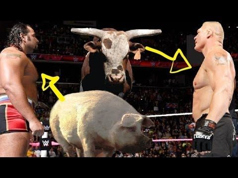 WWE Brock Lesnar vs Rusev - Bull vs Pig OMG Killing Match - Full Fight 2016 watch more:https://youtu.be/BjbX-kjIRsk  If You Like My Video  WWE Brock Lesnar vs Rusev- Full Fight 2016 Then Click on Thumbs Up and Share My Video  If You DisLike My Video Then Click on Thumbs Down   I Do Not Own Any Thing In This Video WWE Brock Lesnar vs Rusev- Full Fight 2016   All Rights Belong To WWE..  Please like comment and subscribe for more! Thank you!!!  More ACTION on WWE NETWORK : http://wwenetwork.com…