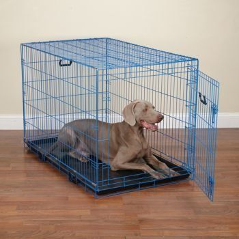 $37.50 Dog Crates for Sale dog crates cheap cheap dog crates This color dog crate are foldable crates for dogs. These dog crates feature close wire spacing, removable floor trays, and removable divider panels. Colorful dog crates offer excellent value. Ideal for traveling with pets or crate training at home. Close wire spacing for strength and stability. Folds suitcase-style for transport. Crate has a removable plastic tray for easy cleaning and a removable black divider panel.