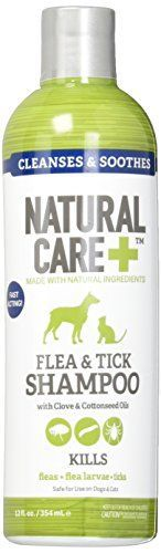 Natural Care Flea and Tick Shampoo for Dogs and Cats 12 oz >>> Check out the image by visiting the link.