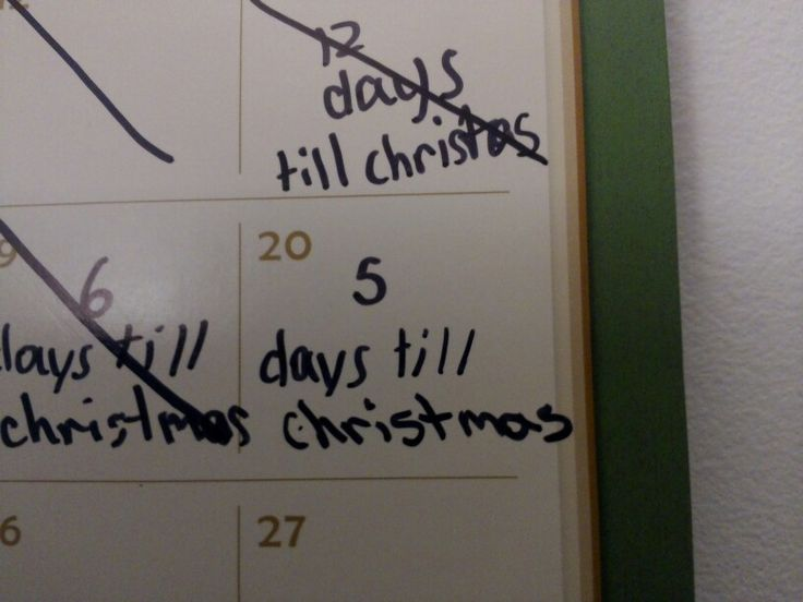 Been keeping an eye on the holidays like a hawk!!!!! Just five more days till Christmas!!!!!
