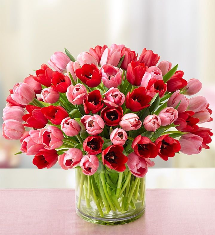 Sweetest Love Tulips Valentines Flowers Flower Delivery Tulip Bouquet