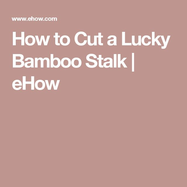How to Cut a Lucky Bamboo Stalk | eHow