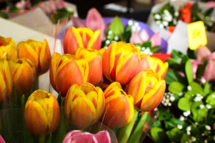 Athens Tour: Flower Shop in Ermou Street