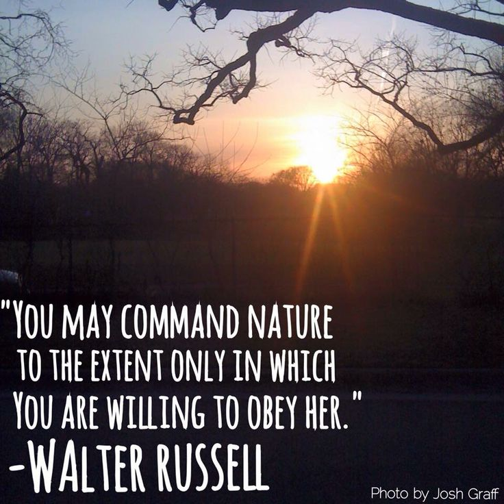 Images Of Nature With Quotes For Facebook: Walter Russell Nature Quote