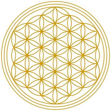 Die Ordnung der Schöpfung (Heilige Geometrie, Blume und Frucht des Lebens…                                                                                                                                                                                 Mehr