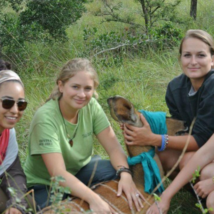 Best Student Summer Jobs Wildlife Intern Summer jobs