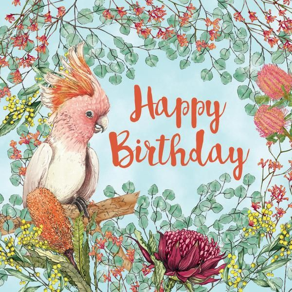 Pin By Katherine Hathaway On Birdy Aussie Christmas Happy Birthday Pictures Australian Christmas