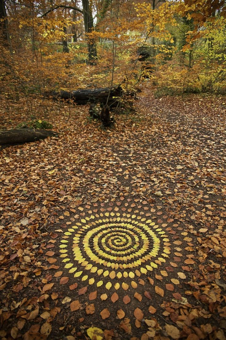 bunte natur mandalas herbstblätter wald james brunt #lifestyle #nature