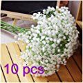 NO:1 Silk Artificial Baby Breath Gypsophila Flower Wedding Home Decor Gift (10pcs)