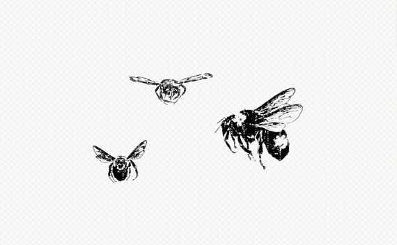 Printable Flying Bees Vintage Illustration by luminariumgraphics