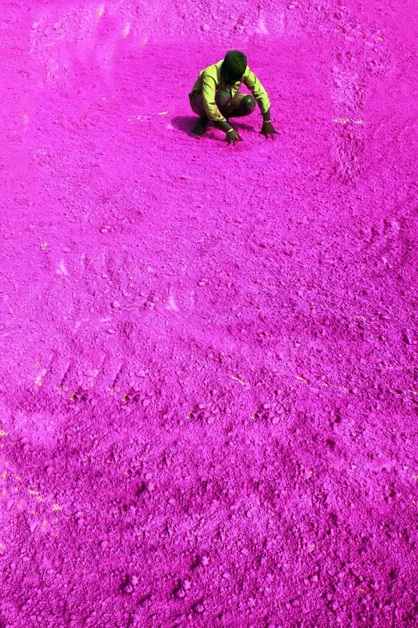 Indian worker dries dye for Holi Festival of Colours |