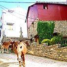 La casa del Maestro ciruela (La Rioja)