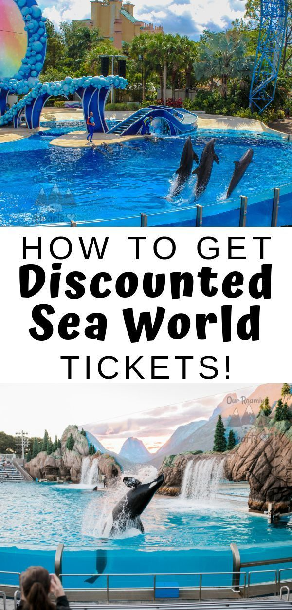 How To Get Discounted Seaworld Tickets Other Budget Tips Usa Places To Visit Sea World Family Travel