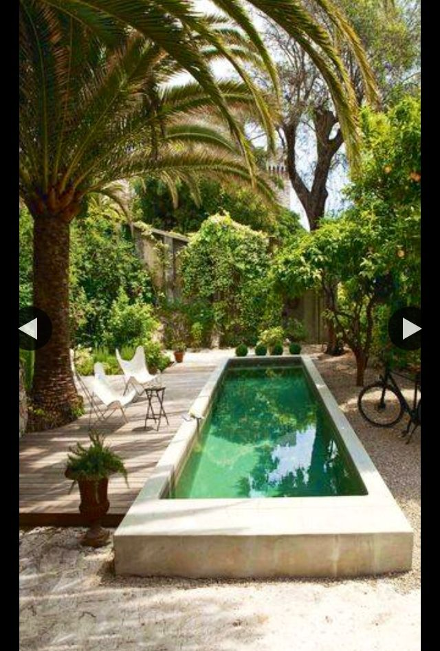 "generally not a fan of a ""raised"" pool, but with the lap pool shape it becomes architectural . . ."