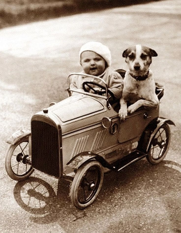 I want a painting or photo like this to frame and hang up... this pretty much sums up my interests. Dogs and cars. Now the kid in the car needs a paintbrush in its hand and wearing glasses and we will be good.