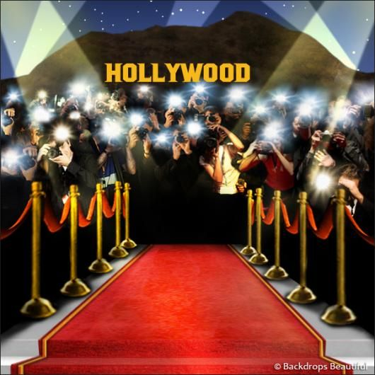Hollywood Photo Backdrop