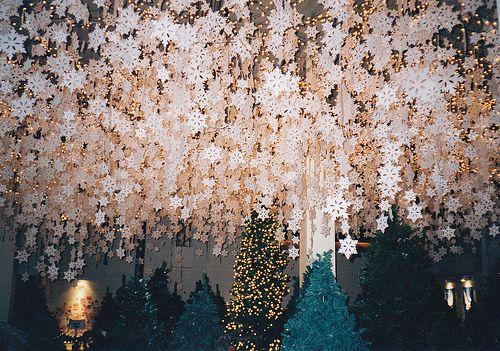 snowflakes: Winter Wonderland Wedding, Paper Decor, Idea, Parties, Winter Wonderland, Inspiration Photography, Christmas, Paper Snowflakes, Ceilings