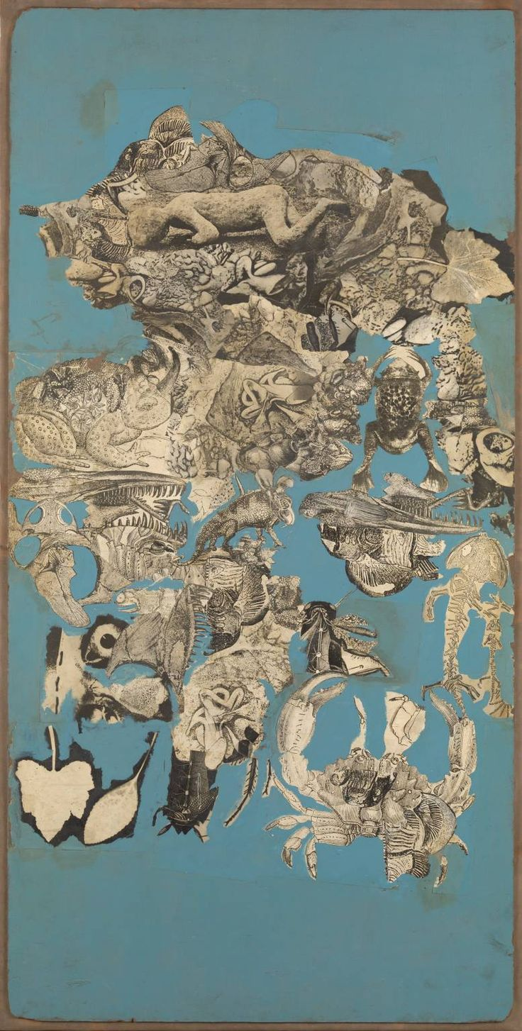 Nigel Henderson (1917‑1985) / Collage for 'Patio and Pavilion' (cycle of life and death in a pond) 1956