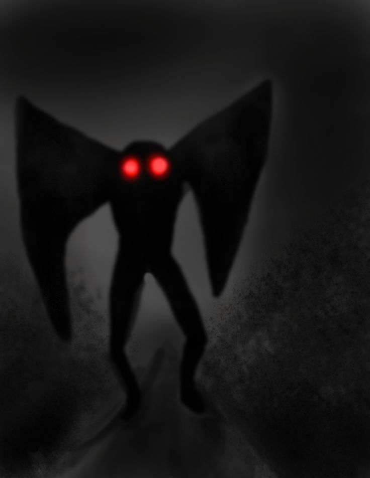 the mothman essay Cryptozoology and essays on human existence: mothman posted by metaphor  molly | tuesday, april 24, 2012 mothman burn a hole into my heart with your.