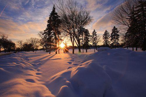 peisaje iarna - Google Search