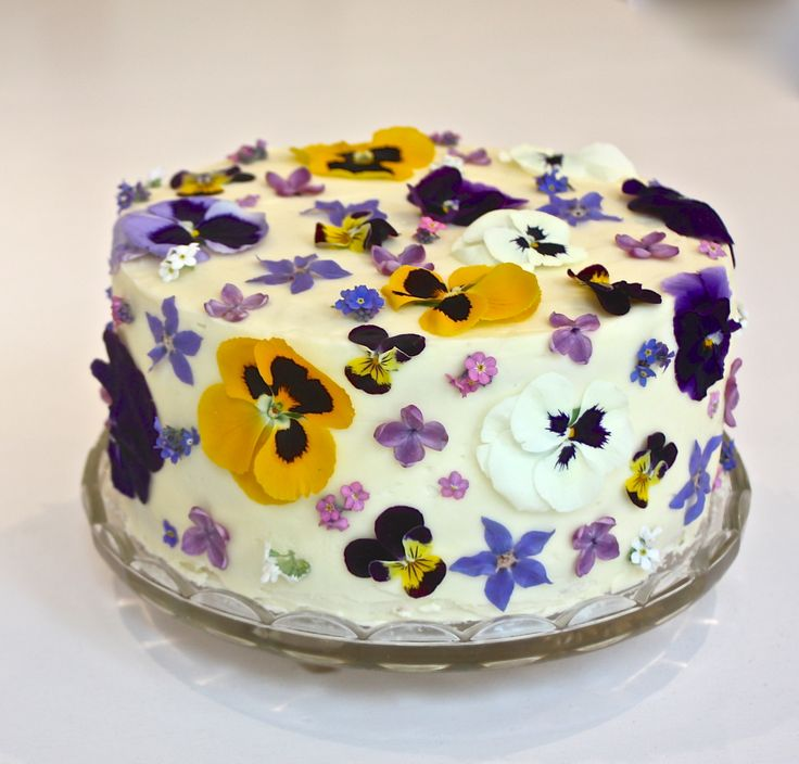 Cake Decorating Flowers Uk : 1000+ images about Violas & Pansies : Maddocks Farm ...