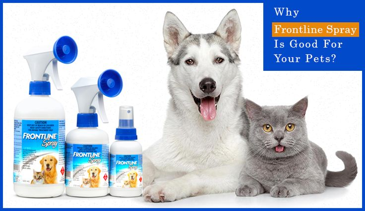 Why Frontline Spray Is Good For Your Pets?
