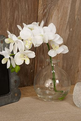 12.99 SALE PRICE! Composed of smooth, creamy white petals on a gracefully arching stem, these Artificial Orchids will remain perfectly arranged throughout th...